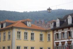 Wirtshaus zum Nepomuk & Hotel zur Alten Brücke